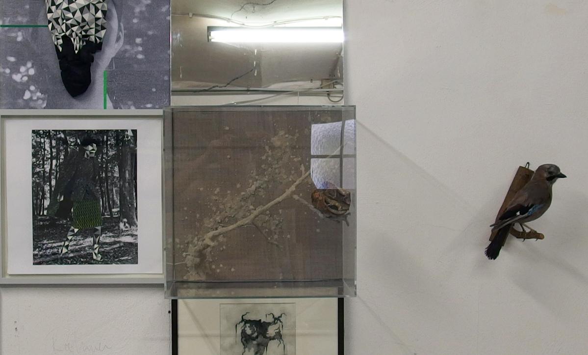 SKAFTE KUHN, Neun Ochsen Saufen Wasser - Galerie für Kunst in Offenburg